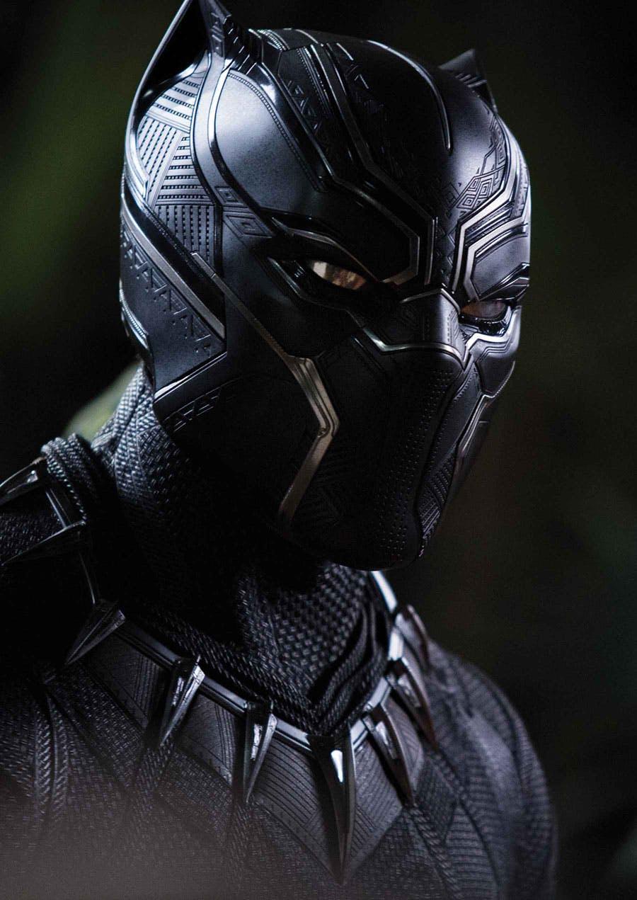 Black Panther Close-Up